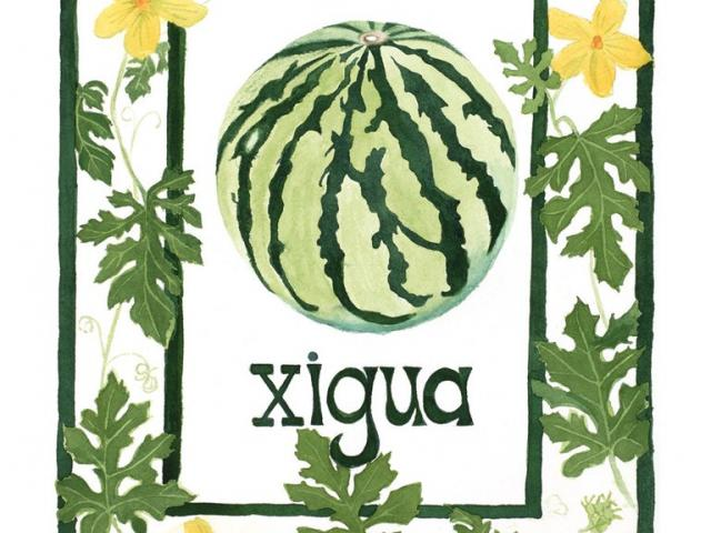Watermelon xigua clipart jpg free Zucchini Clipart xigua 17 - 1300 X 1300 Free Clip Art stock ... jpg free