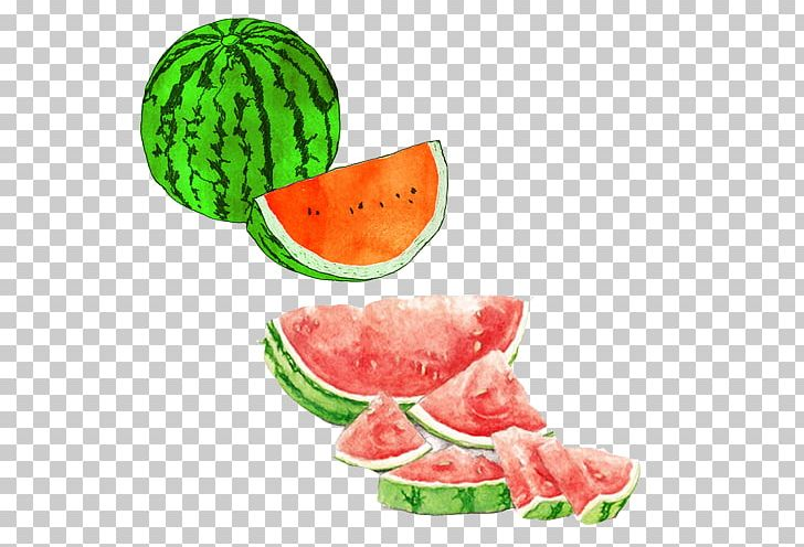 Watermelon xigua clipart vector library stock Watermelon Watercolor Painting Drawing Seedless Fruit ... vector library stock