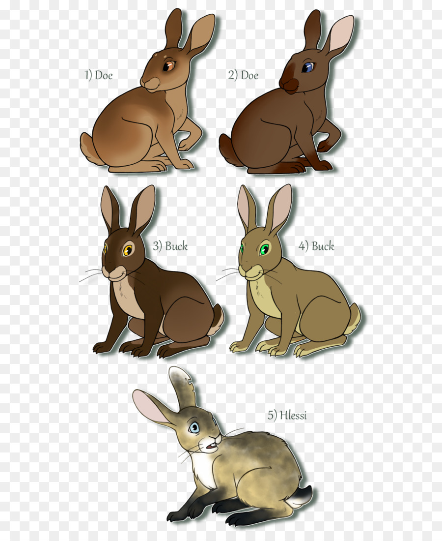 Watership down clipart transparent background image free library Domestic rabbit Watership Down Hare Child - watership down ... image free library