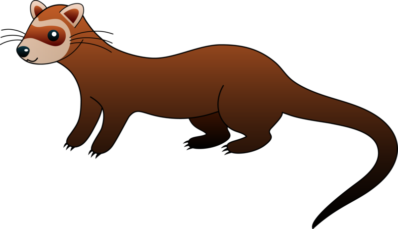 Wisile clipart clip free stock Download Free png pin Weasel clipart cute carto - DLPNG.com clip free stock