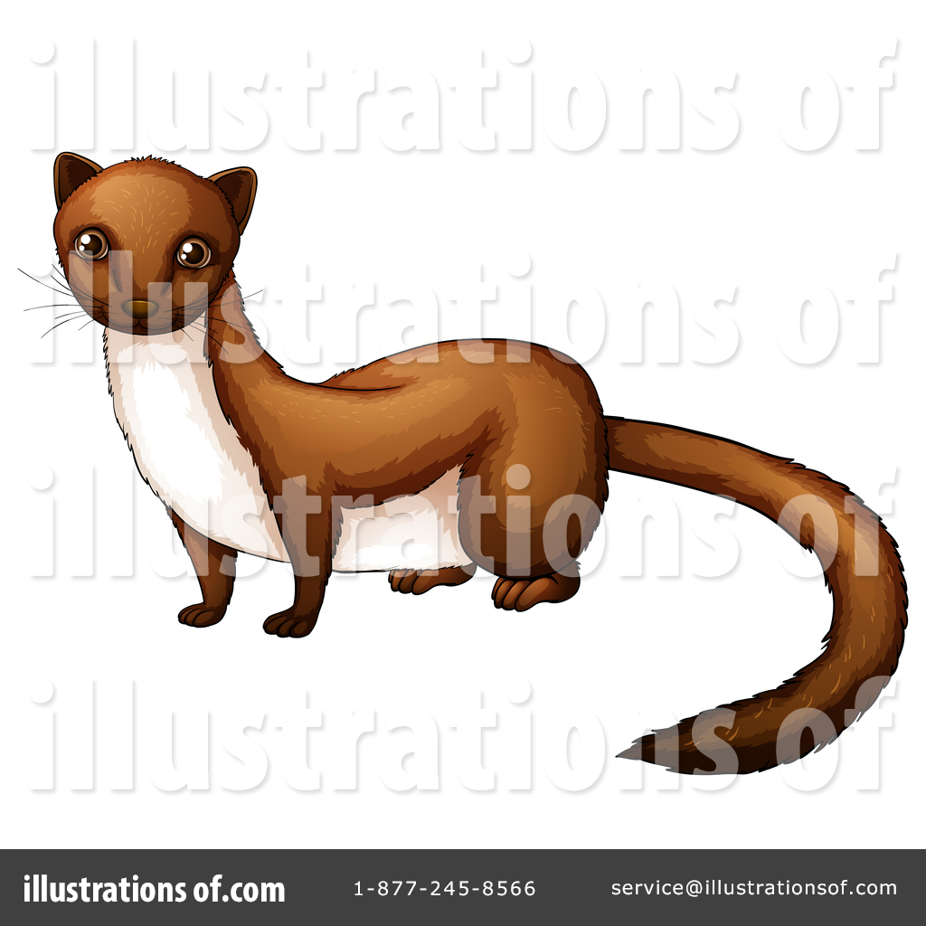 Wisile clipart clipart black and white stock Weasel Clipart #1344315 - Illustration by Graphics RF clipart black and white stock