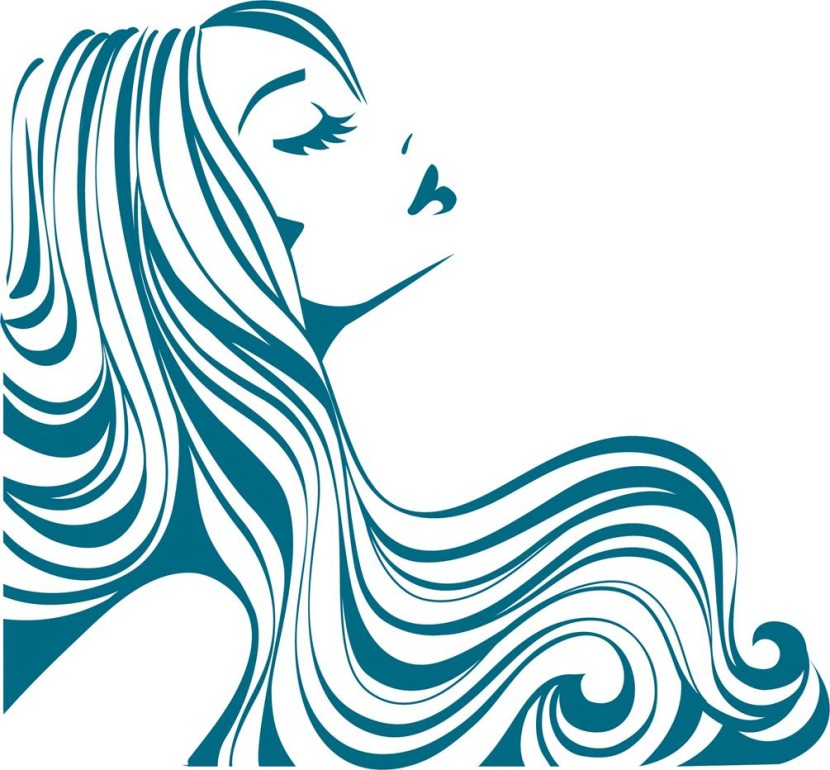 Weave hair clipart image freeuse Hair Weave image freeuse