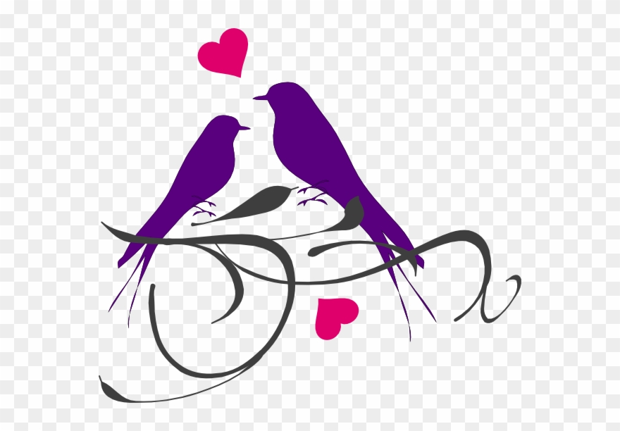 Wedding love bird clipart image free library Love Birds Clip Art - Transparent Wedding Dove Png (#577370 ... image free library