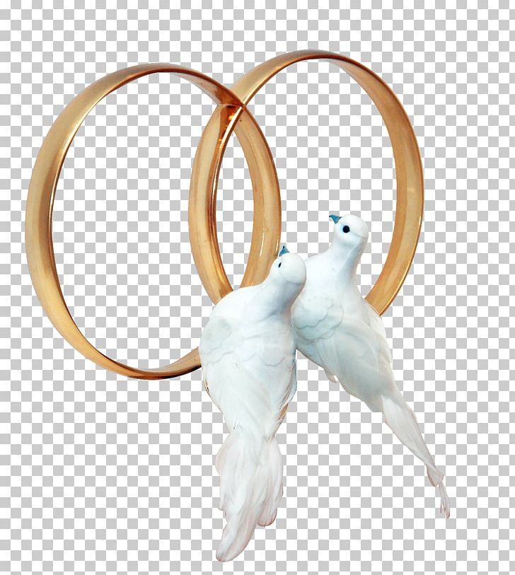 Wedding rings and dovees clipart image free library Pigeons And Doves Wedding Ring PNG, Clipart, Body Jewelry ... image free library