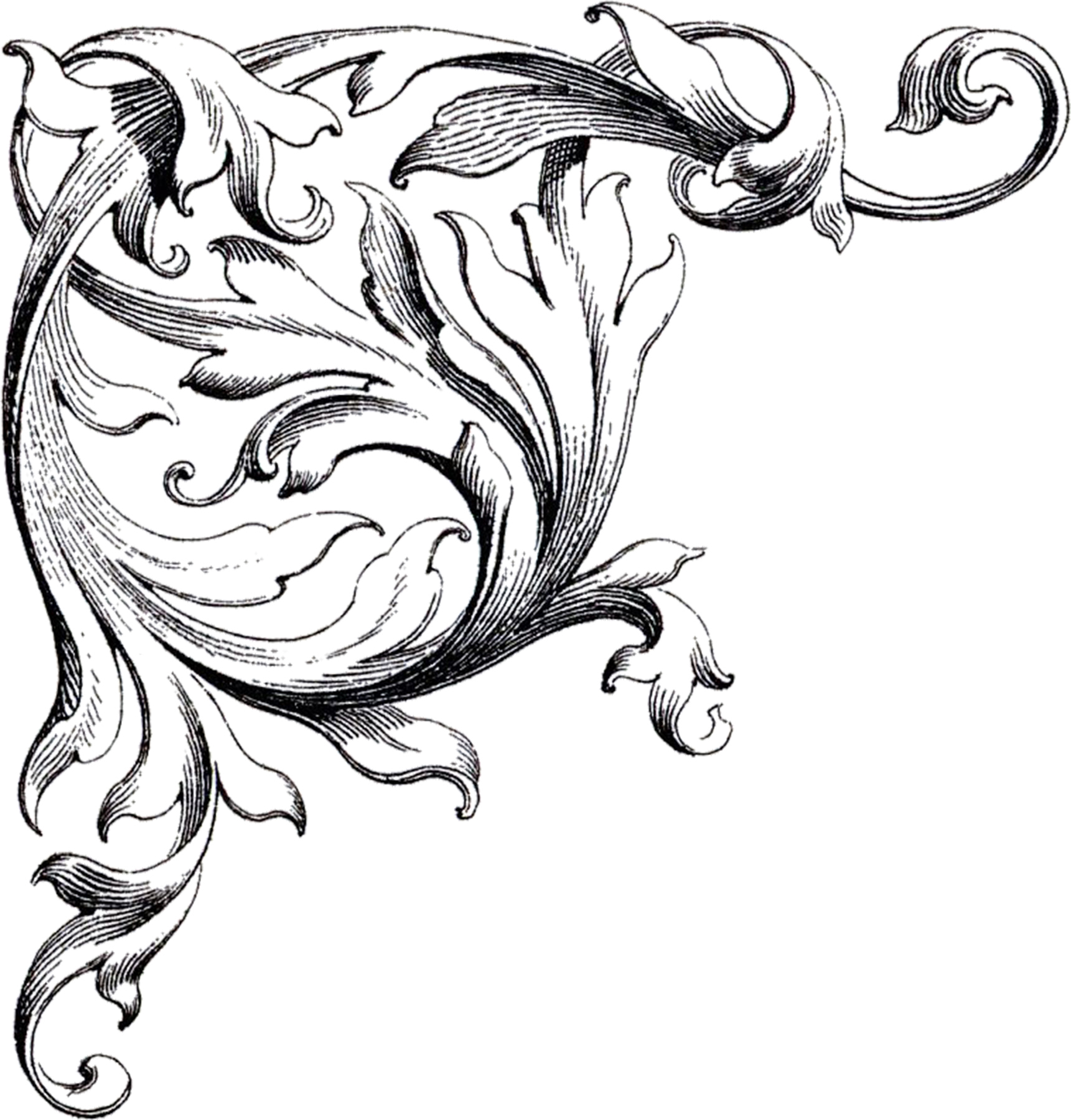 Wedding scroll clipart free vector stock Free Wedding Clip Art Scrolls - The Graphics Fairy vector stock