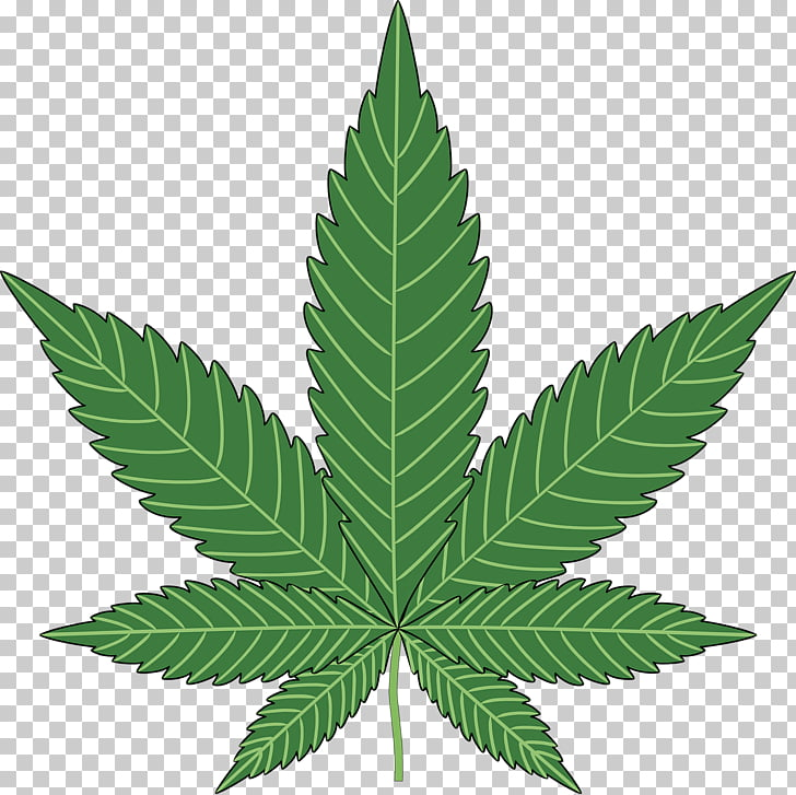 Weed leaf clipart 1600x900 graphic freeuse library Cannabis PNG clipart   free cliparts   UIHere graphic freeuse library