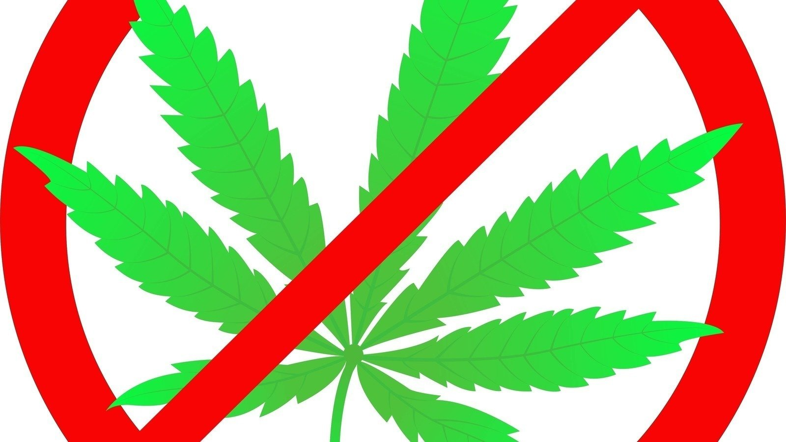 Weed leaf clipart 1600x900 image free download Petition · Do NOT give this farm a Conditional Use Permit to ... image free download