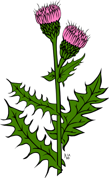 Weed bud clipart vector royalty free stock Pulling Weeds Clipart | Free download best Pulling Weeds ... vector royalty free stock