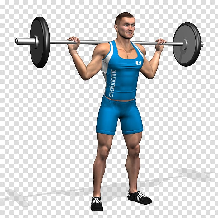 Weight lifting spotting clipart graphic freeuse library Barbell Dumbbell Bench Weight training Squat, barbell ... graphic freeuse library