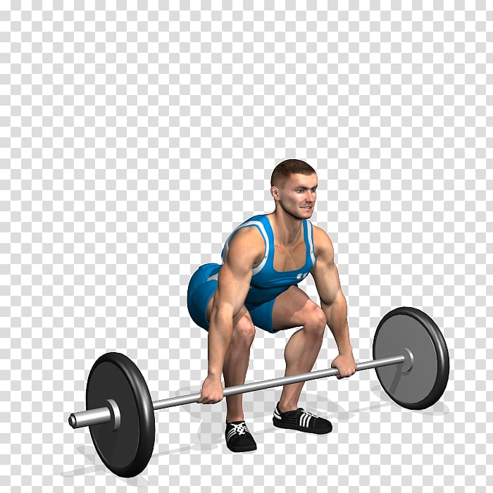 Weight lifting spotting clipart banner freeuse download Barbell Weight training Physical exercise Muscle Physical ... banner freeuse download