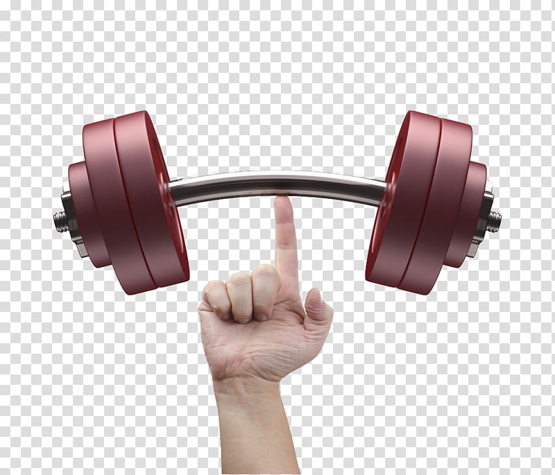 Weightlifting with one arm clipart clip art stock Barbell Weight training Exercise equipment Fitness Centre ... clip art stock