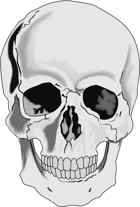 Weird skulls clipart pink black and white stock Free Skeleton Head Cliparts, Download Free Clip Art, Free ... black and white stock