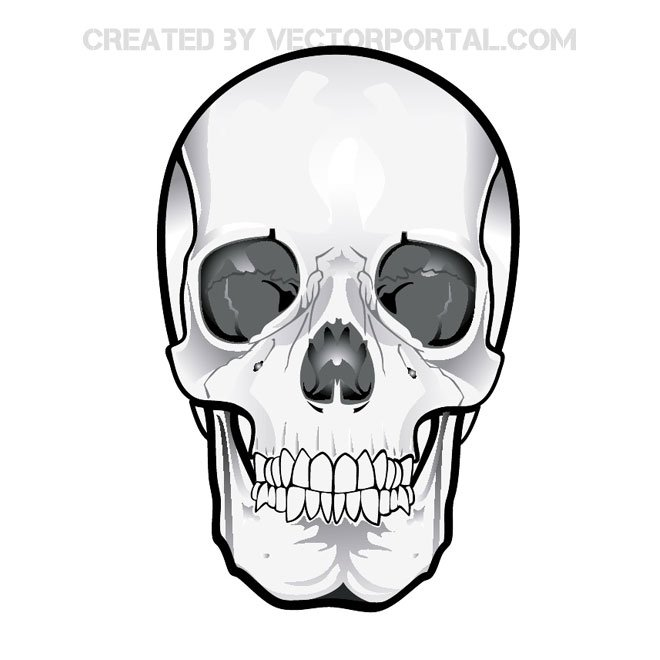 Weird skulls clipart pink png library stock Cute Skull Clipart   Free download best Cute Skull Clipart ... png library stock
