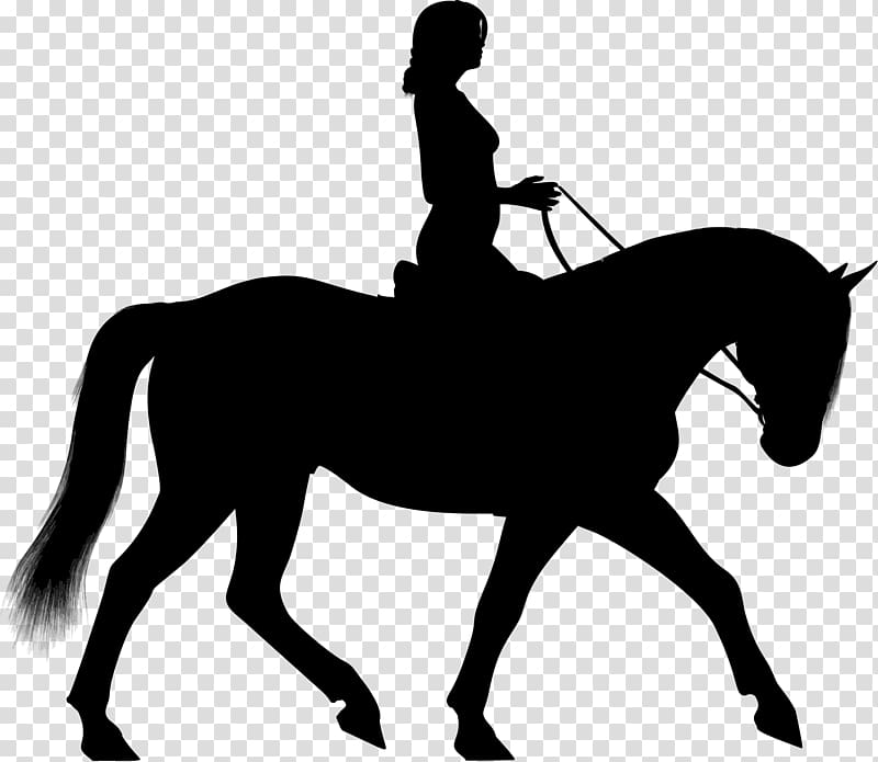 Horserider clipart clip art free library Horse Equestrian Silhouette , horse riding transparent ... clip art free library