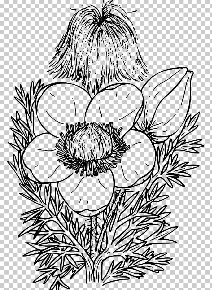 Western floral clipart banner royalty free library Western Anemone Floral Design Red Columbine PNG, Clipart ... banner royalty free library