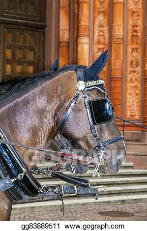 Western stagecoach horsewhip clipart jpg download Picture - Head of stagecoach horses in detail . Stock Photos ... jpg download