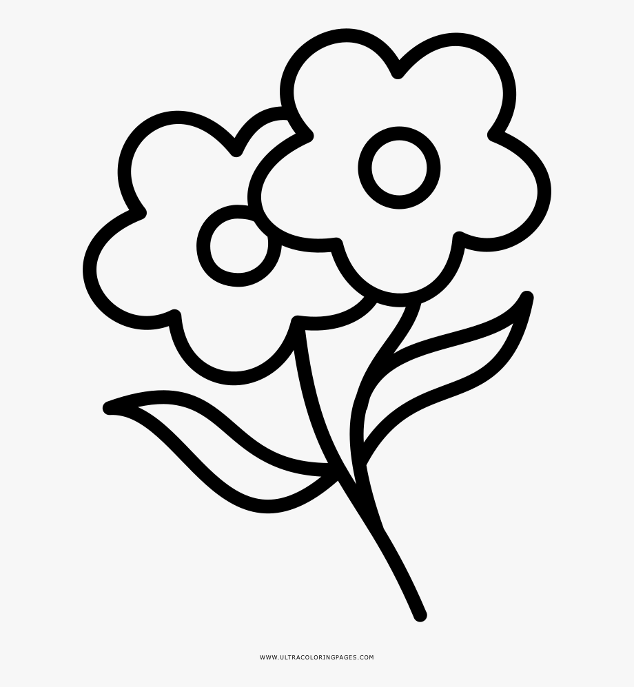 Western white flowers clipart image library library Flowers Coloring Page - Vector Graphics #2552741 - Free ... image library library