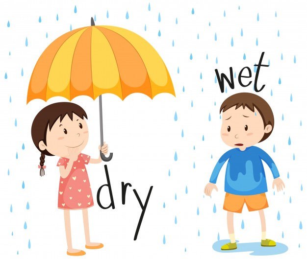 Wet and dry weather clipart clipart transparent download Opposite adjective dry and wet Vector | Free Download clipart transparent download