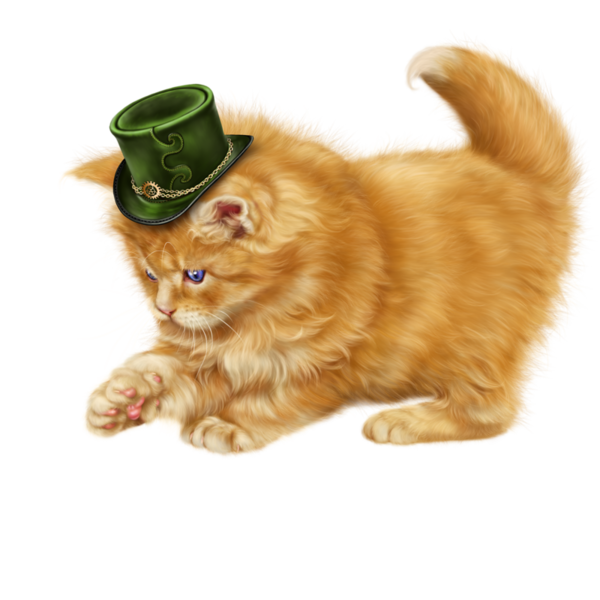 Wet cat clipart picture stock chatons,chats,cat,gato,Katze,katter,kettir,cait, | Clipart cute cats ... picture stock