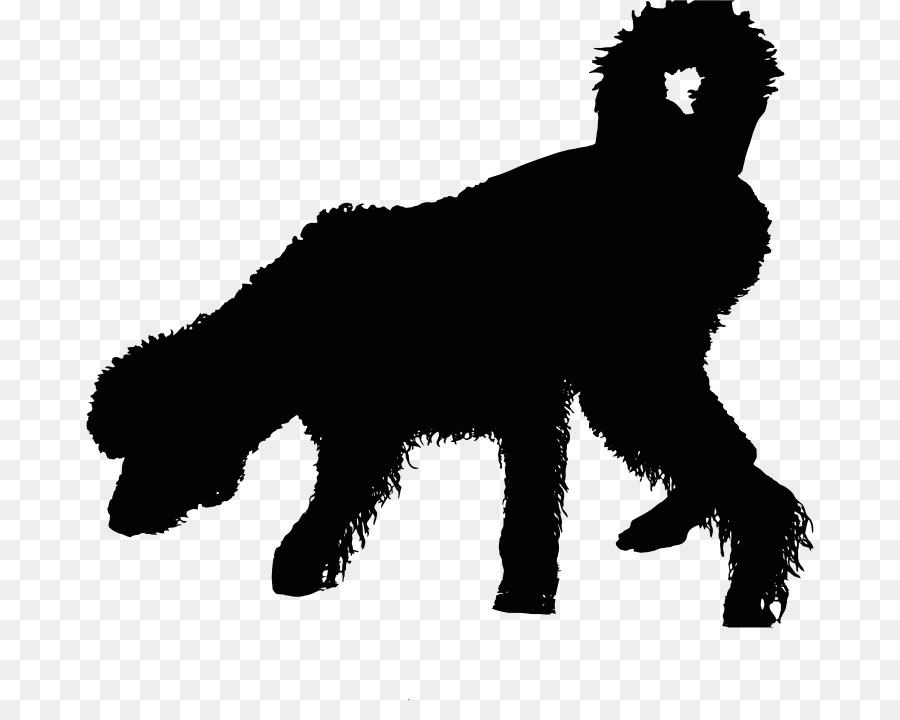 Wet pet clipart image freeuse download Bear Background clipart - Puppy, Horse, Dog, transparent ... image freeuse download