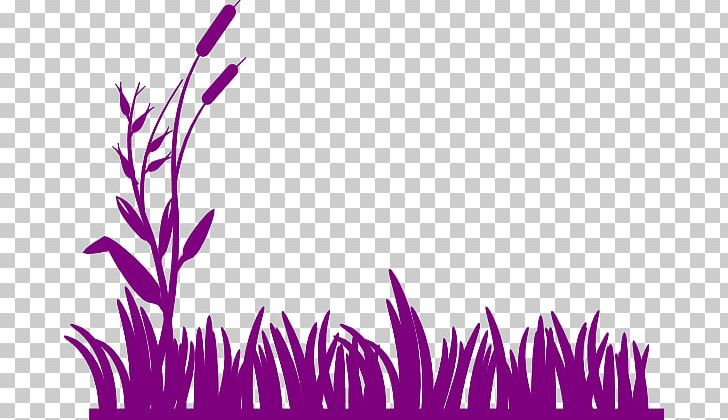 Wetland clipart banner black and white library Wetland Swamp PNG, Clipart, Cattail, Clip Art, Color ... banner black and white library