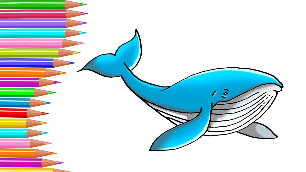 Whale clipart good morning image royalty free download How to draw a whale step by step for kids image royalty free download