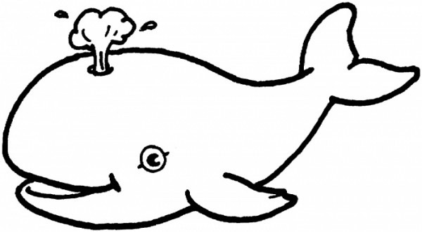 Whale clipart line drawing black and white download Whale Line Drawing | Free download best Whale Line Drawing ... black and white download