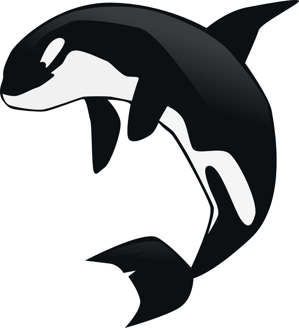 Whale jumping out of water clipart black and white