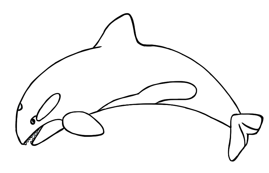 Whale jumping out of water clipart black and white freeuse library Orca Whale Clipart   Free download best Orca Whale Clipart ... freeuse library
