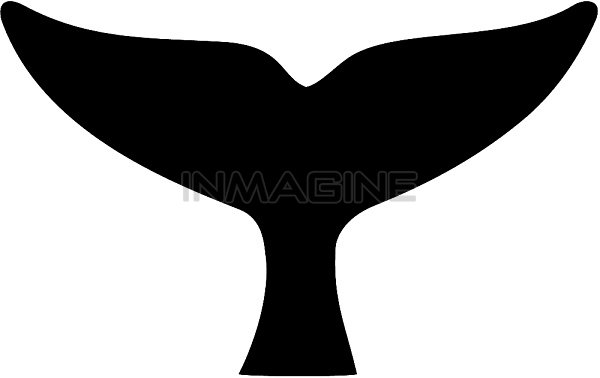 Whale tail clipart images clip Whale Tail Clip Art & Look At Clip Art Images - ClipartLook clip