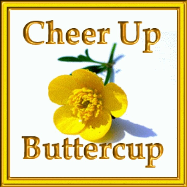 What s up buttercup clipart image library Cheer Up Buttercup - Clip Art Library image library