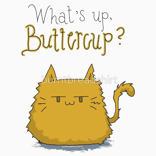 What s up buttercup clipart image What\'s up, Buttercup?, a t-shirt of cute, cat, kitty, hunger ... image