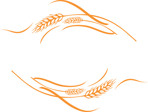 Wheat clipart border picture royalty free Free Wheat Border Cliparts, Download Free Clip Art, Free ... picture royalty free