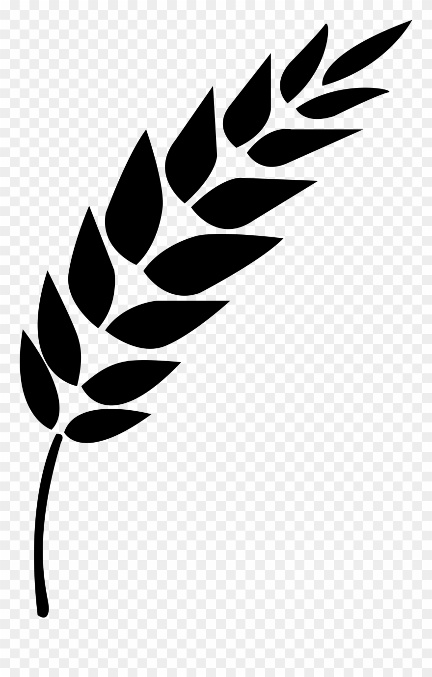 Wheat clipart vector banner freeuse download Wheat Vector - Black And White Wheat Stalk Clipart (#847632 ... banner freeuse download