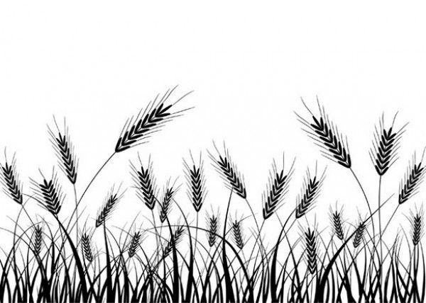 Wheat field silhouette clipart jpg freeuse A black and white wheat silhouette vector Vector plant ... jpg freeuse