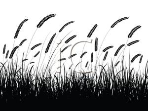 Wheat field silhouette clipart png library library Wheat Field Silhouette - Clipart png library library