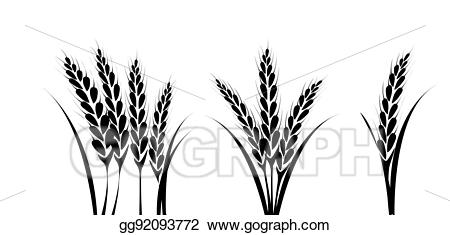 Wheat field silhouette clipart banner black and white library Vector Illustration - Corn or wheat silhouette drawings. EPS ... banner black and white library