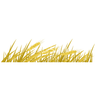 Wheat frame clipart image freeuse stock Free Wheat Border Cliparts, Download Free Clip Art, Free ... image freeuse stock