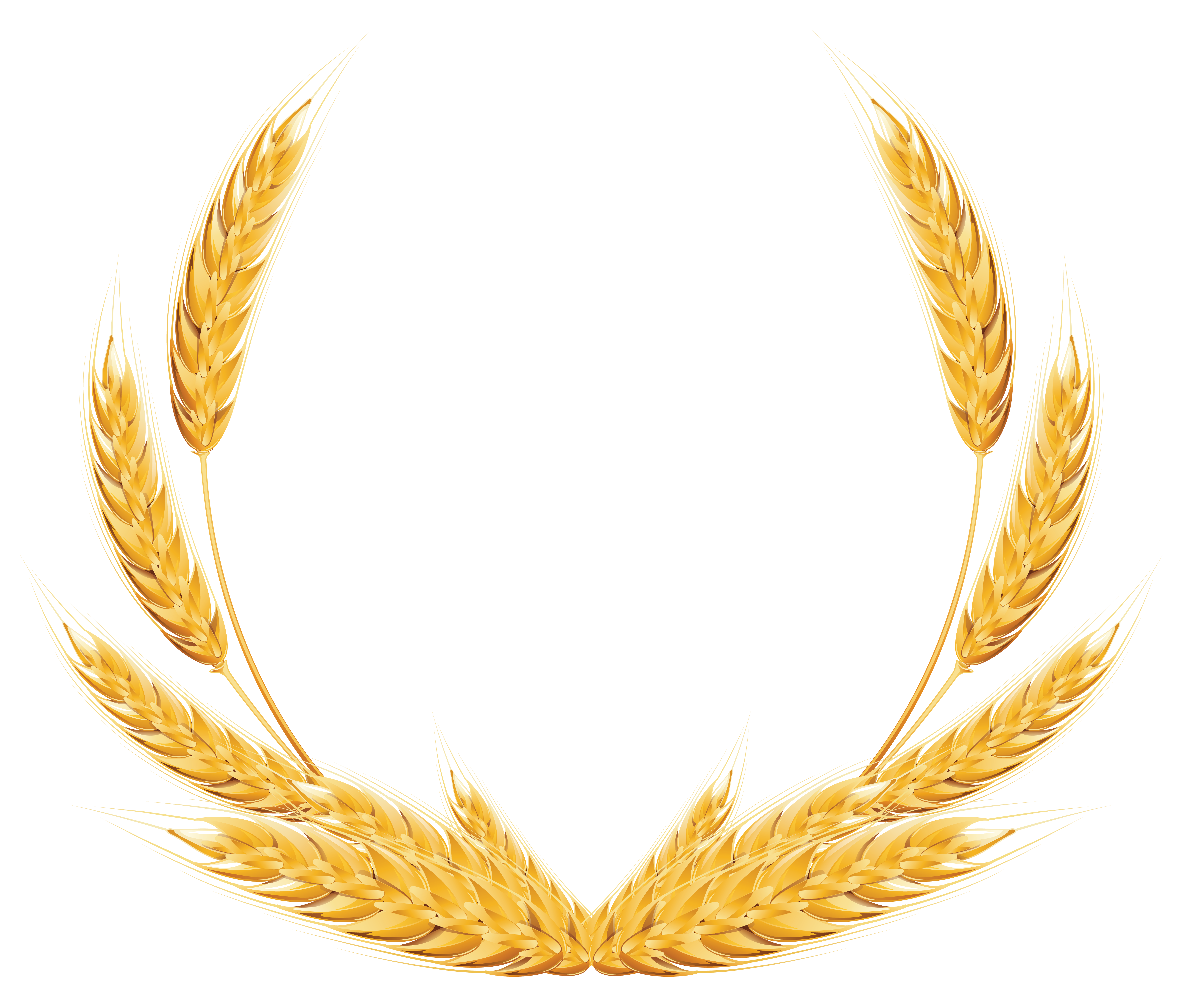 Wheat frame clipart vector free Pin by alish on Design | Wheat decorations, Clip art, Free ... vector free