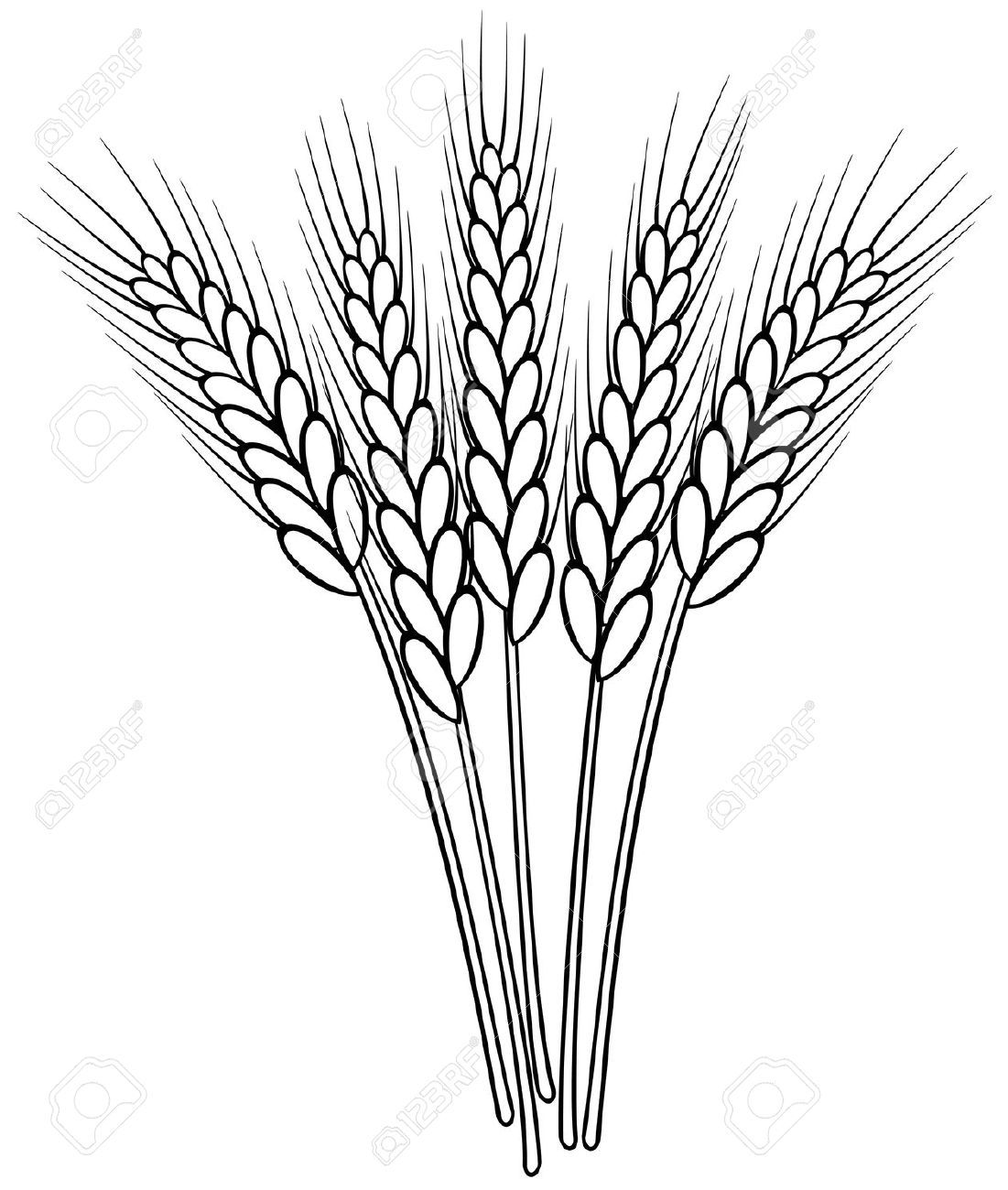 Wheat outline clipart jpg free stock small wheat sheaf vector - Google Search | Ink | Wheat ... jpg free stock