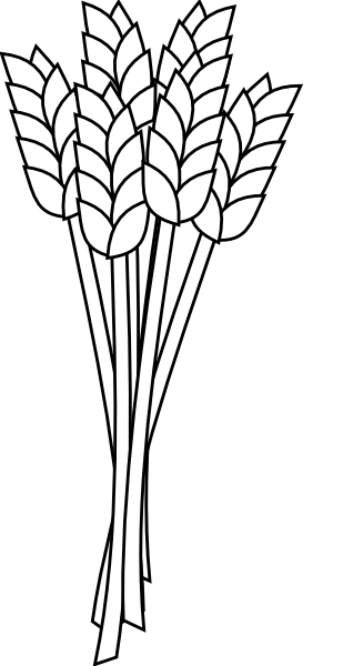 Wheat outline clipart picture freeuse library Wheat Clipart | Free download best Wheat Clipart on ... picture freeuse library
