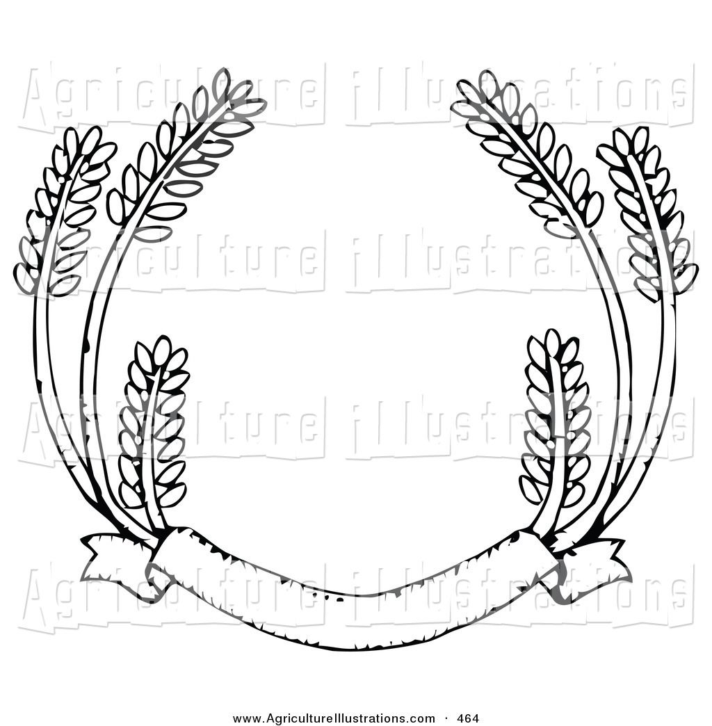 Wheat strand clipart image black and white download Agriculture Clipart of a Blank Banner with Strands of Wheat ... image black and white download
