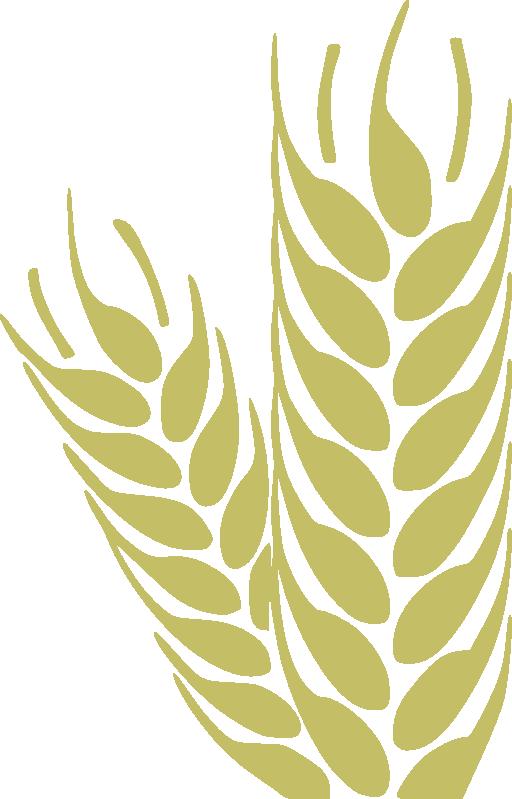 Wheat sun clipart clip art free download Wheat Trigo Clipart | i2Clipart - Royalty Free Public Domain Clipart clip art free download