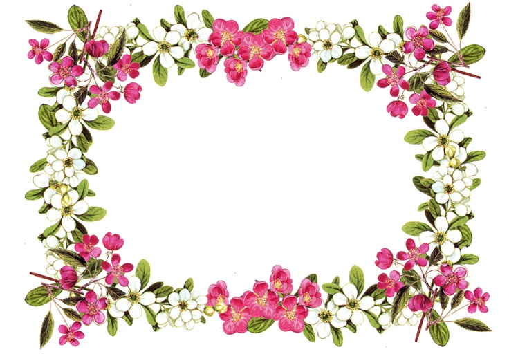Where can i download free clipart flower border vector free Free Flower Border Png, Download Free Clip Art, Free Clip ... vector free