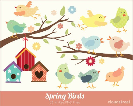Where to buy clipart for commercial use banner transparent stock buy 2 get 1 free Spring Birds Clipart for personal and ... banner transparent stock