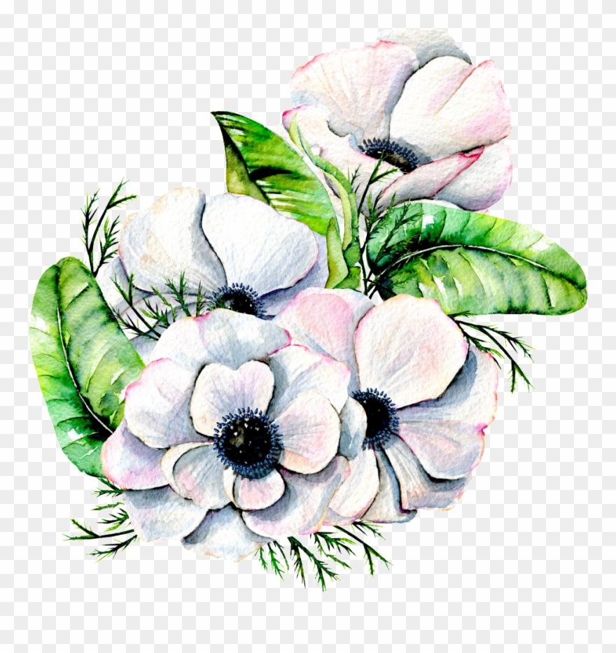 White anemone flower clipart clip art stock Hand Painted Elegant White Flower Png Transparent ... clip art stock
