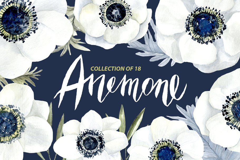 White anemone flower clipart png freeuse Watercolor anemone white flowers png freeuse