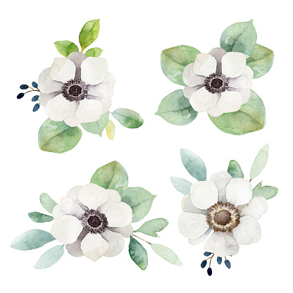 White anemone flower clipart vector library stock Free Anemone Flower Cliparts, Download Free Clip Art, Free ... vector library stock