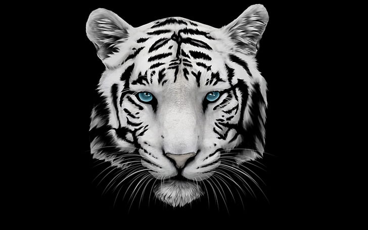 White begal tiger with blue eyes clipart clip art transparent library HD wallpaper: White Tiger and Blue Eyes | Wallpaper Flare clip art transparent library