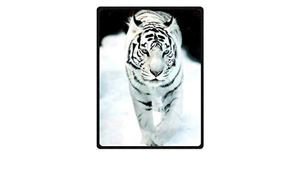White begal tiger with blue eyes clipart picture transparent stock Bengal Tiger Blue Eyed Royal White Throw Blanket 58\